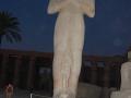 17.11 - 01.12.2008