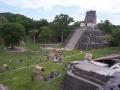 108-Tikal7