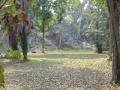 92-Tikal4